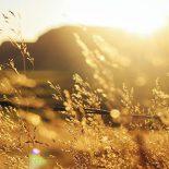 عکاسی-در-ساعات-طلایی